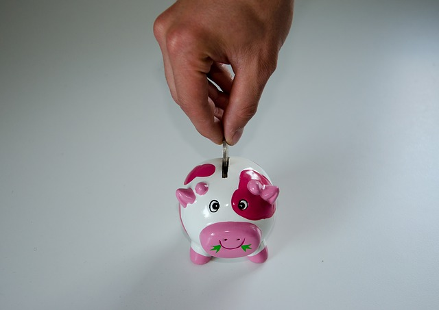 Save Money Piggy Bank